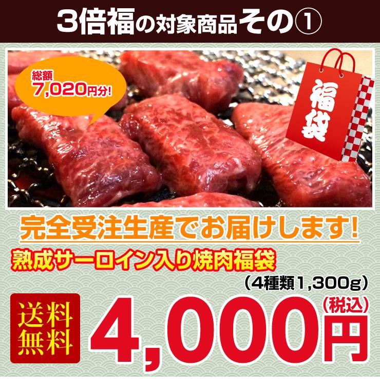 f:id:kiko_kamiya:20170122023130j:plain