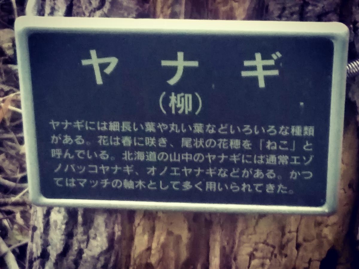 f:id:kikonoheya:20190710183739j:plain