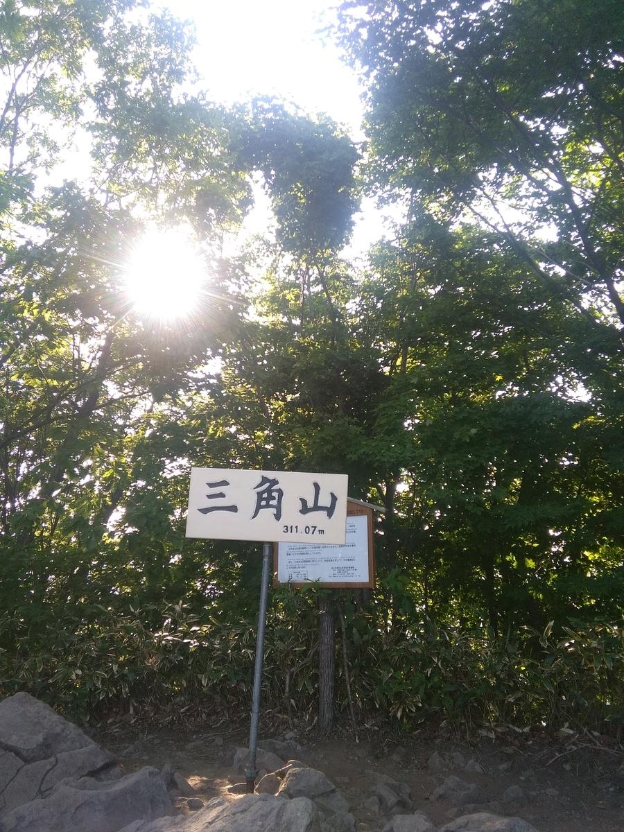 f:id:kikonoheya:20190710184056j:plain