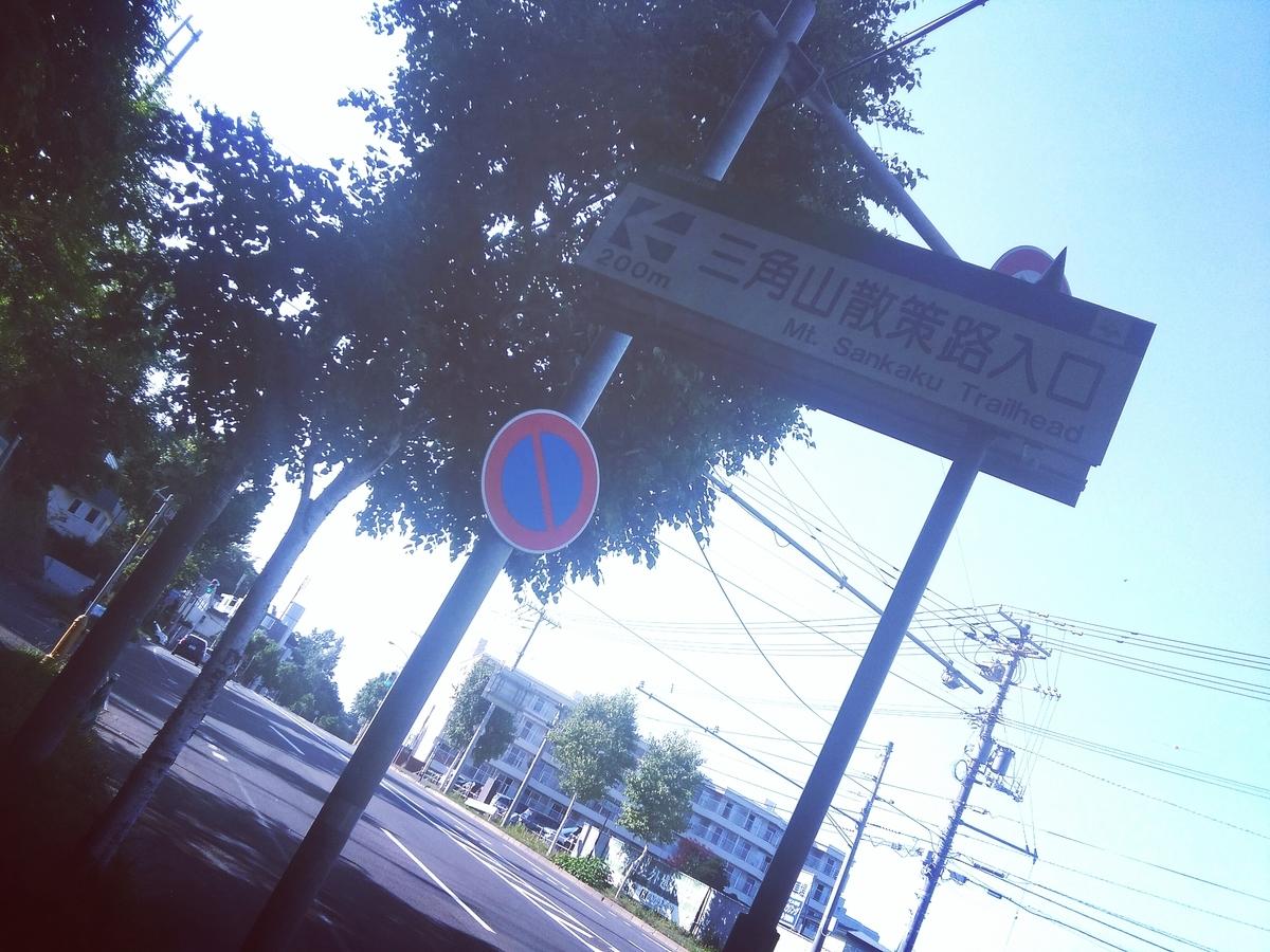 f:id:kikonoheya:20190710184314j:plain