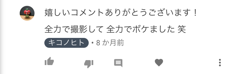 f:id:kikonohito:20181124153346j:plain