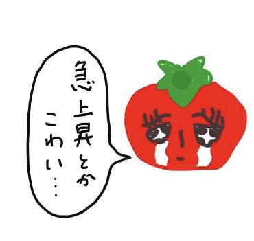 f:id:kikonohito:20190726121823p:plain