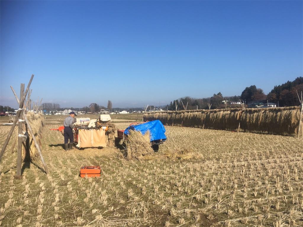 f:id:kikori-farm:20181201175526j:image