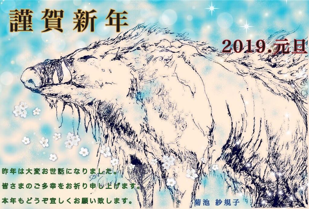 f:id:kikori-farm:20190101001319j:image