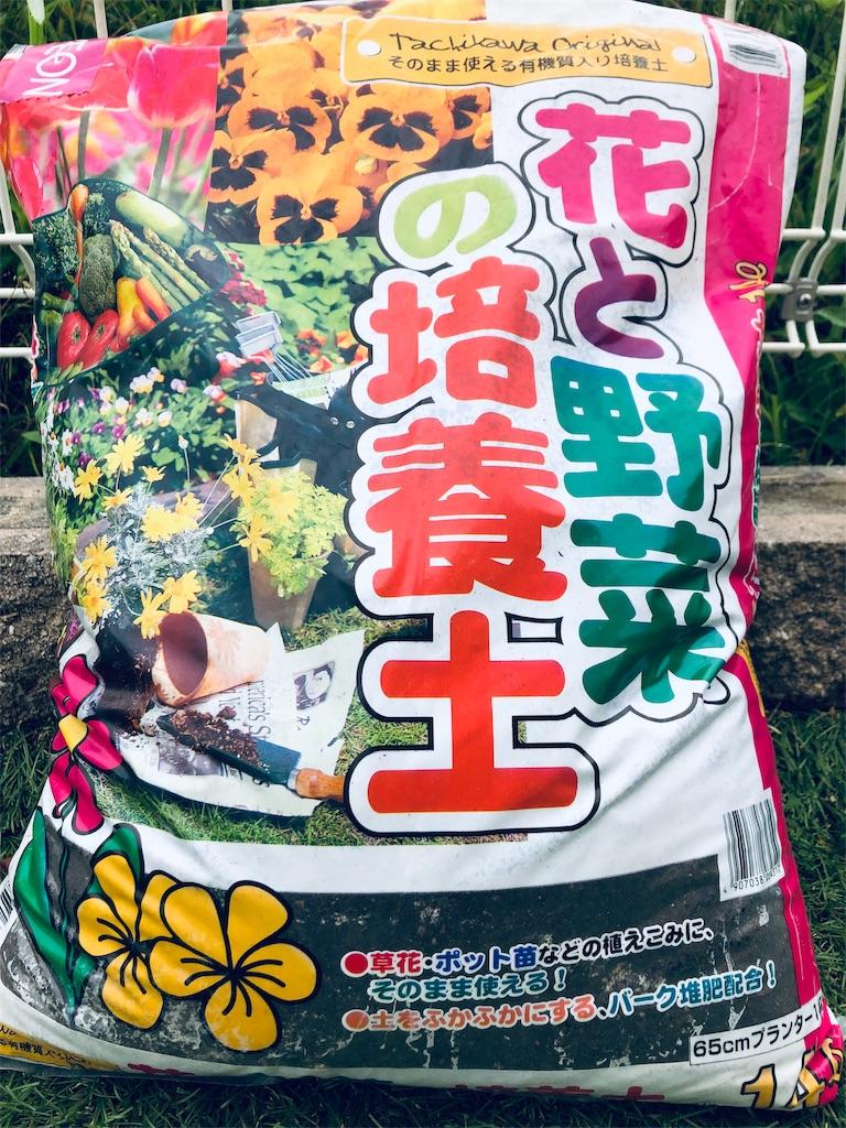 f:id:kikoricafe:20191002143707j:image
