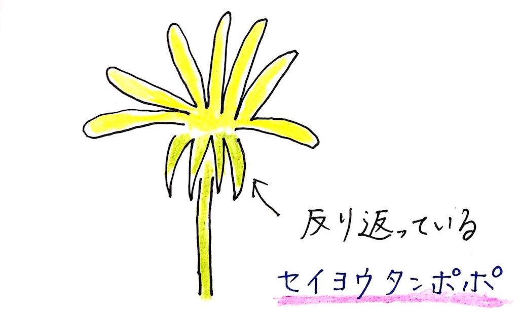 f:id:kikoricafe:20200506102801j:image