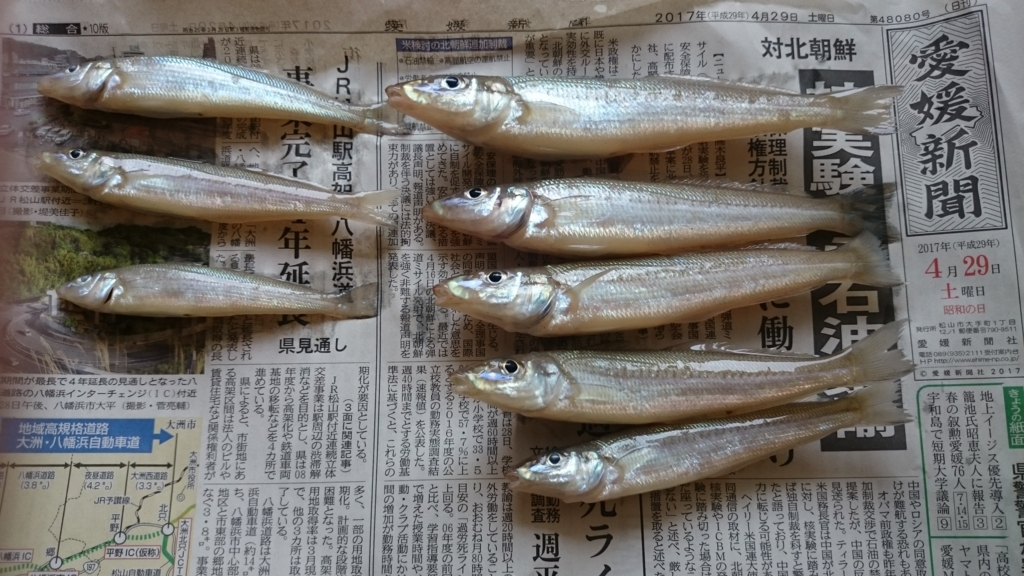 f:id:kikoropapa:20170503063300j:plain