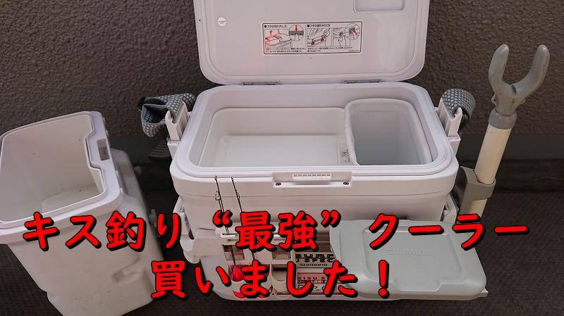 f:id:kikoropapa:20200211225748j:plain