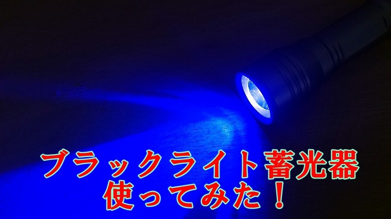 f:id:kikoropapa:20200926151237j:plain