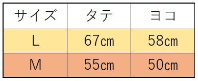 f:id:kikoropapa:20201110221646j:plain