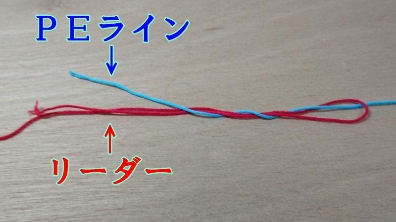 f:id:kikoropapa:20201130213935j:plain