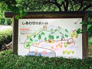 f:id:kikouryuuou:20170624185233j:plain