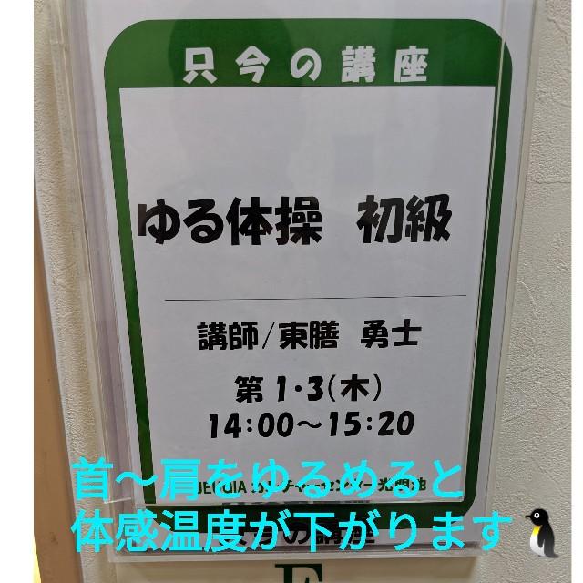 f:id:kikouyuuki:20190606170226j:image