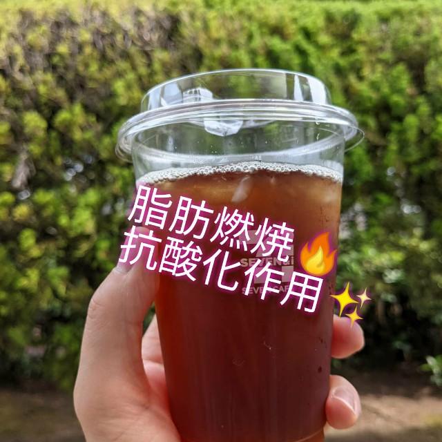 f:id:kikouyuuki:20210603130237j:image