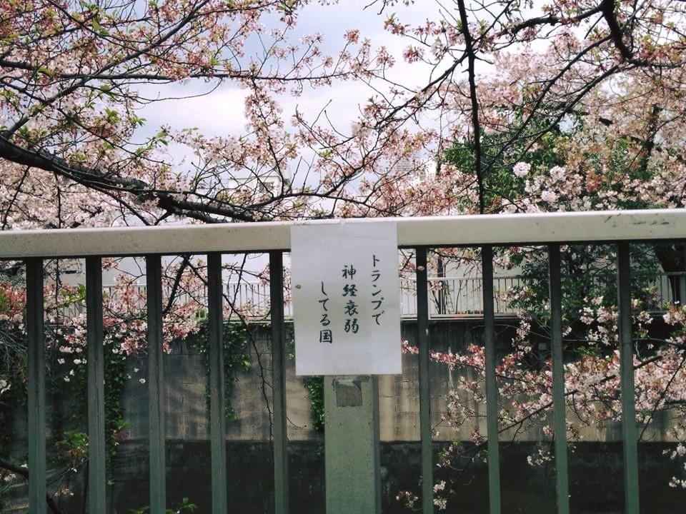 f:id:kikuchidesu:20160409153420j:plain