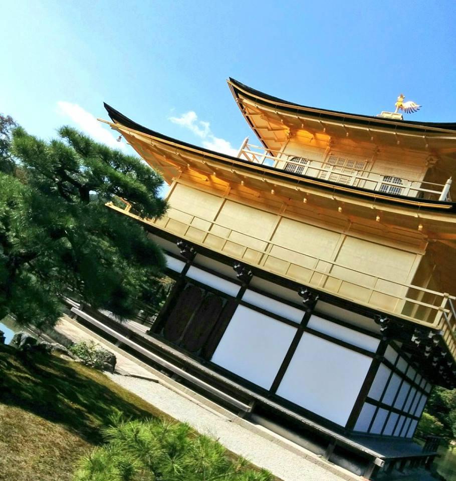 f:id:kikuchidesu:20161105200609j:plain