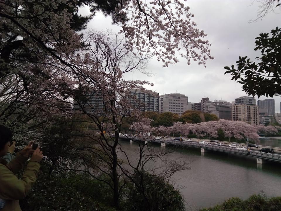 f:id:kikuchidesu:20170410205154j:plain
