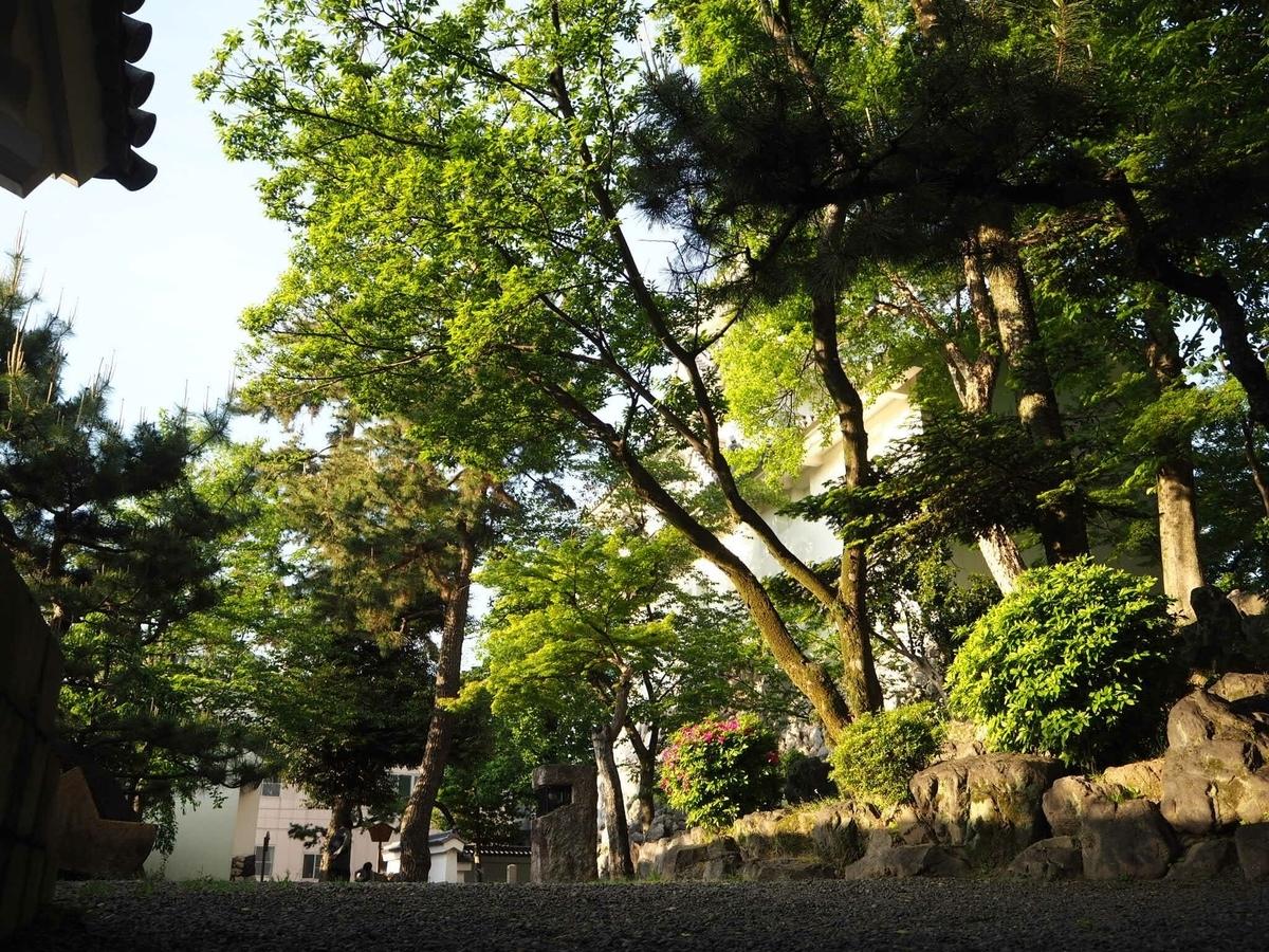 f:id:kikuchidesu:20190514222351j:plain