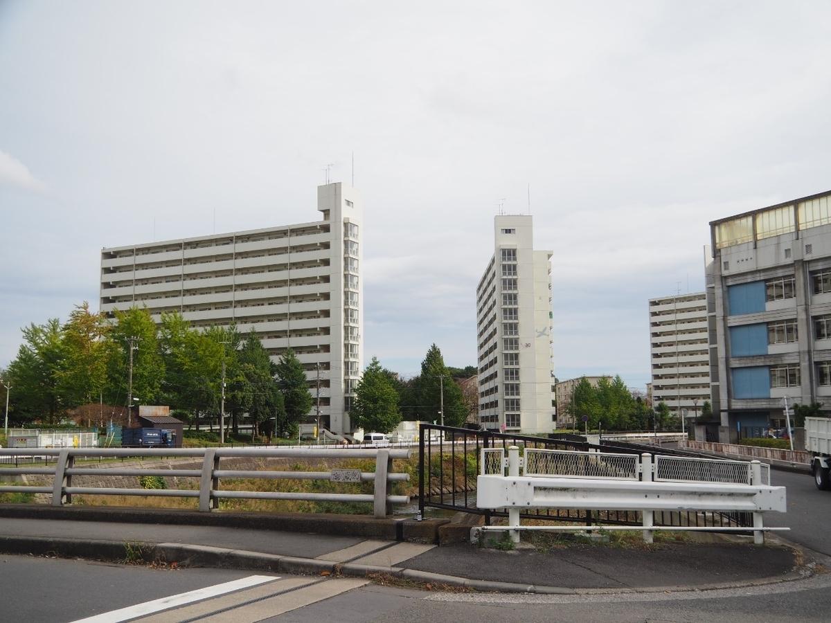f:id:kikuchidesu:20201108215142j:plain