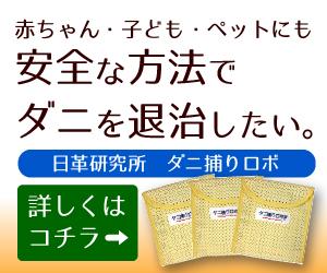 f:id:kikuchikana2151:20190318084542j:plain