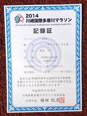 20141116川崎国際