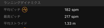 201511031周ピッチとストライド