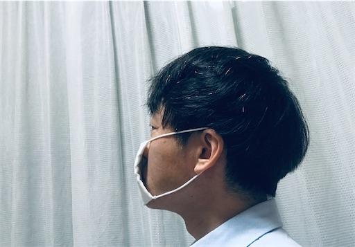 f:id:kikuchiroshi:20200529202051j:image