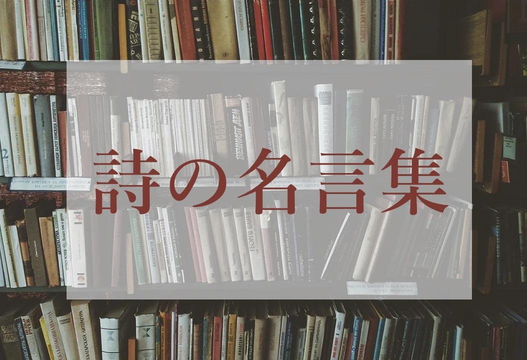 f:id:kikui_y:20210510202213j:plain