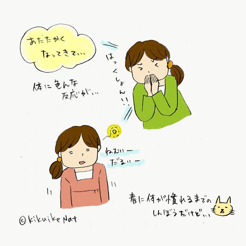 f:id:kikuikenat:20180308174520j:plain
