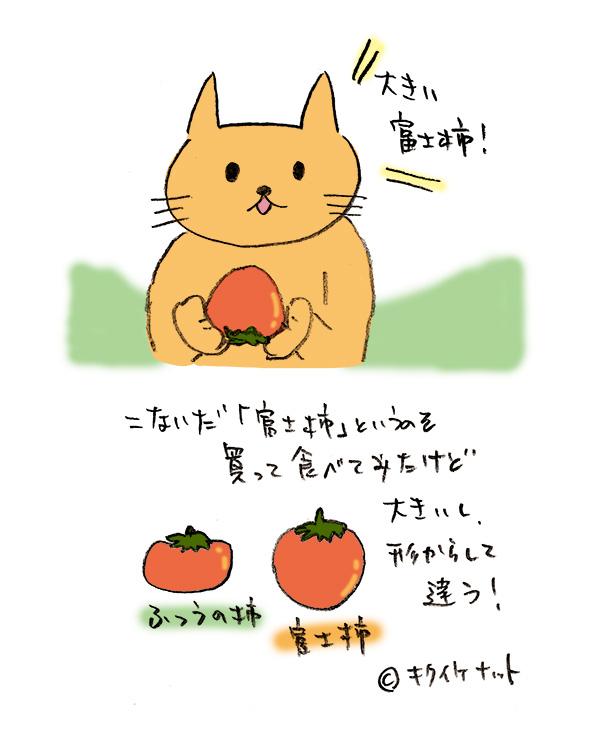 f:id:kikuikenat:20181201151704j:plain