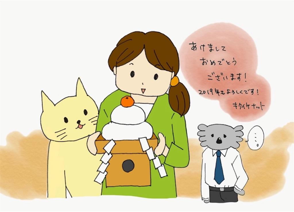 f:id:kikuikenat:20190101214627j:image