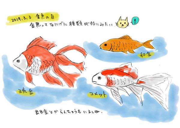 f:id:kikuikenat:20190624183152j:plain