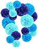 Recosis ペーパーフラワー フラワーポンポン、18個セット パーティー 結婚式 誕生日 飾り付け 紙花 ミックスカラー - ライトブルー、ブルーとホワイト