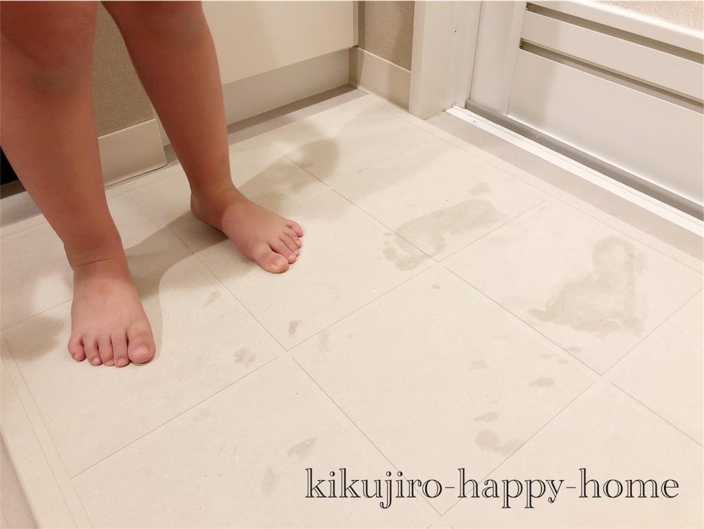 f:id:kikujiro_happy_home:20180618092537j:image