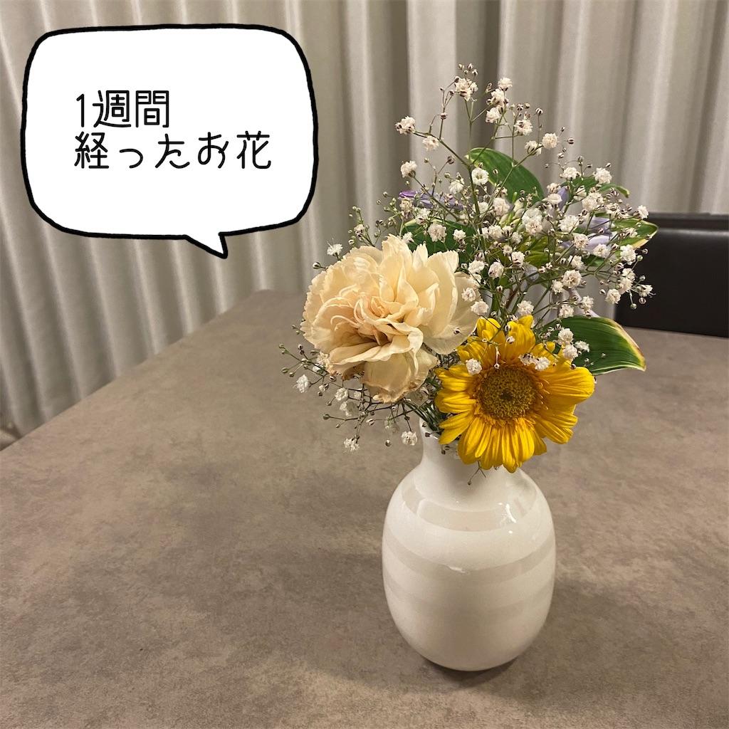 f:id:kikujiro_happy_home:20200626181954j:image