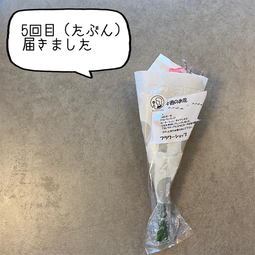 f:id:kikujiro_happy_home:20200626181957j:image