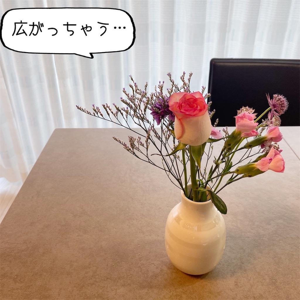 f:id:kikujiro_happy_home:20200626182023j:image