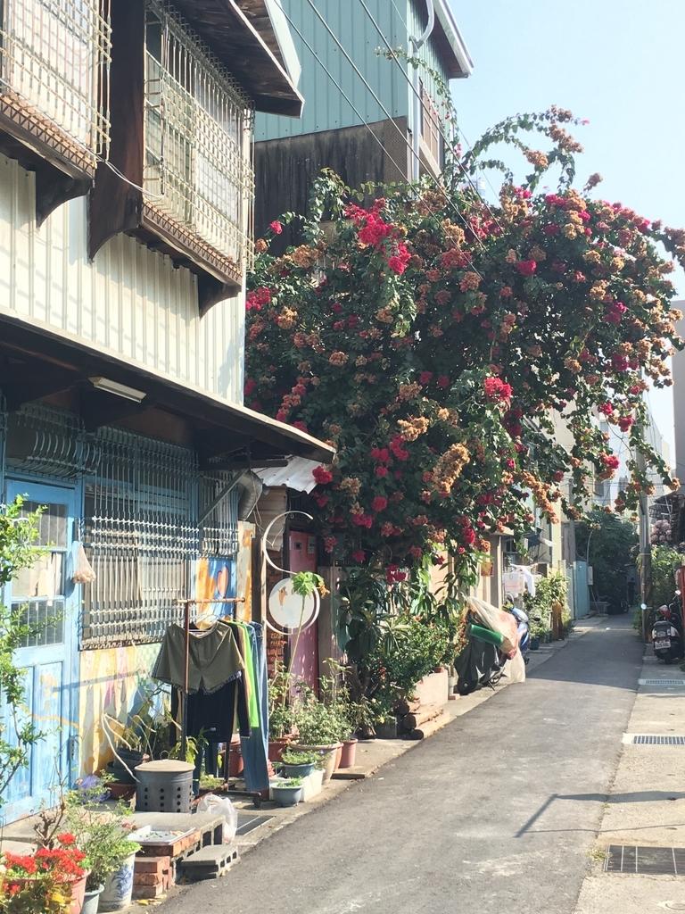 ピンクの花が咲いている大きな木と家