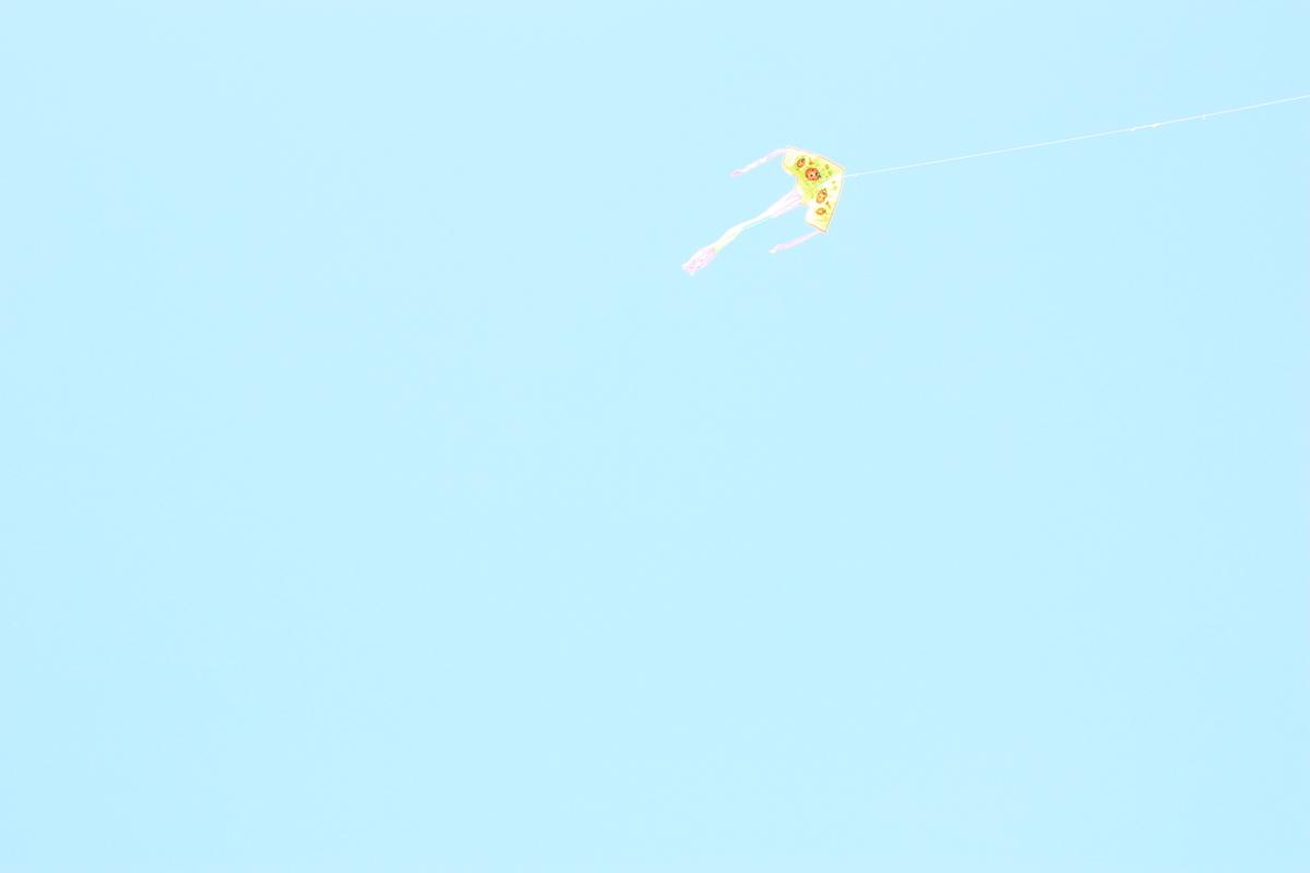 f:id:kikukikuku:20190531180316j:plain