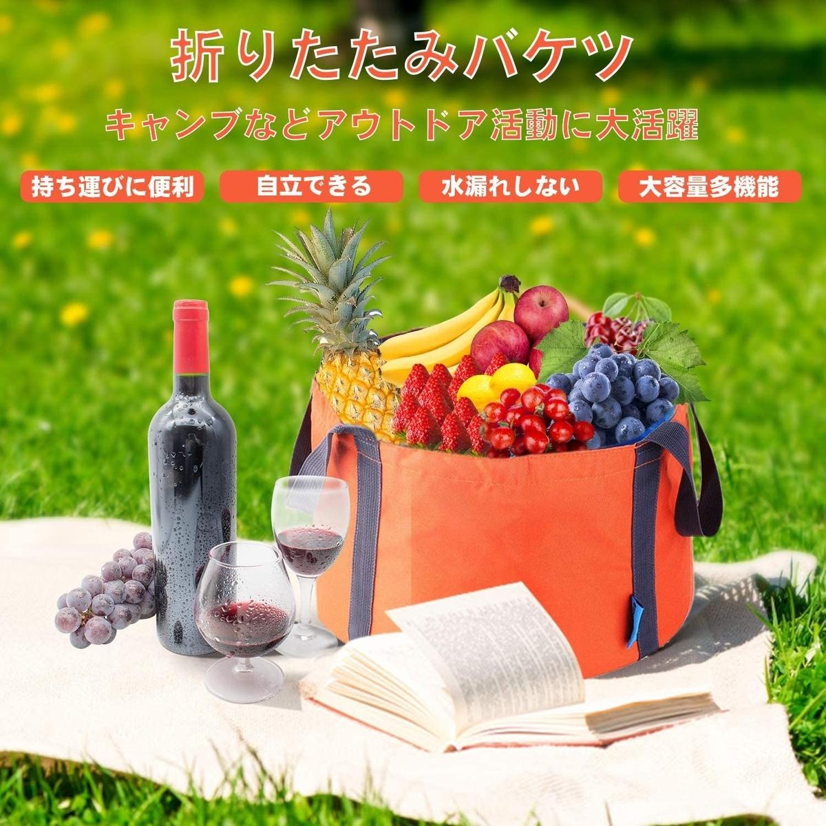 f:id:kikukikuku:20210129124026j:plain
