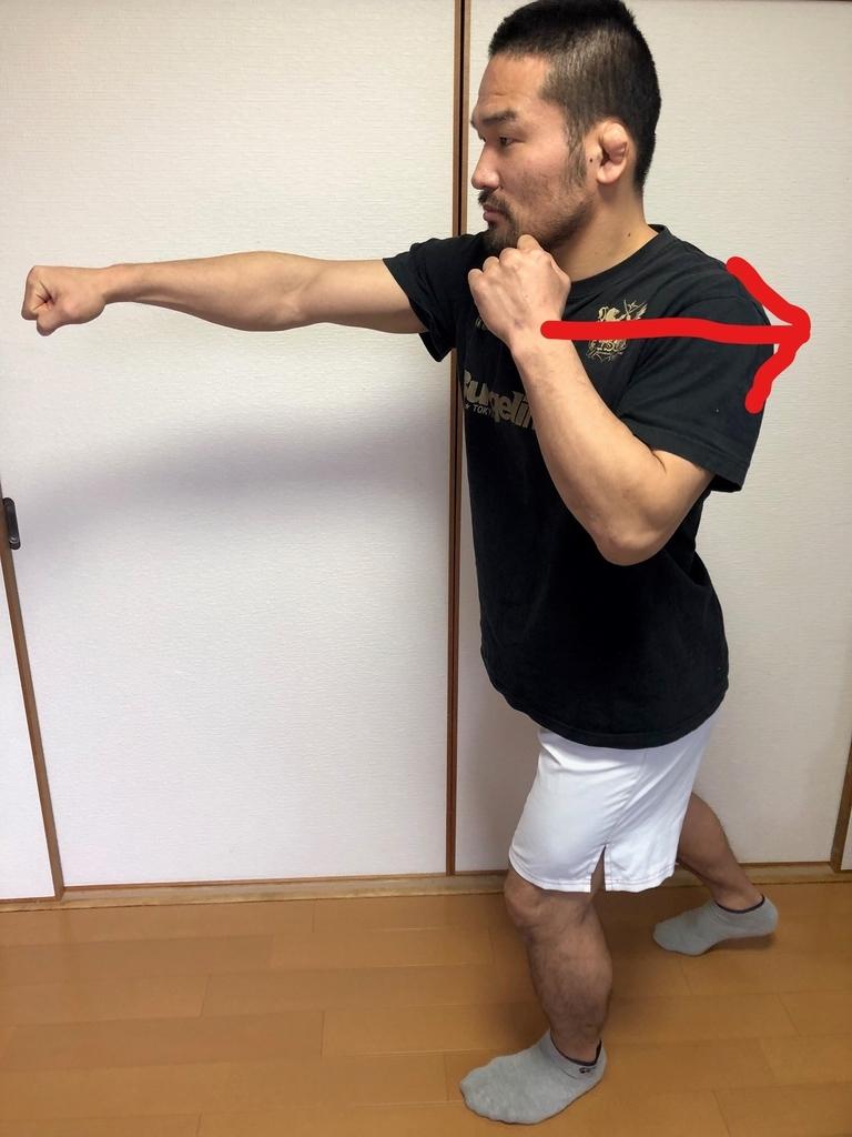 f:id:kikunokatsunori:20190303094403j:plain