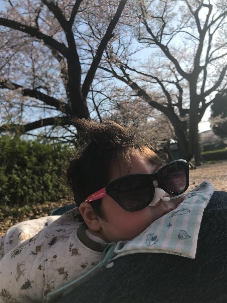 f:id:kikuo_tamura:20180417001849j:plain