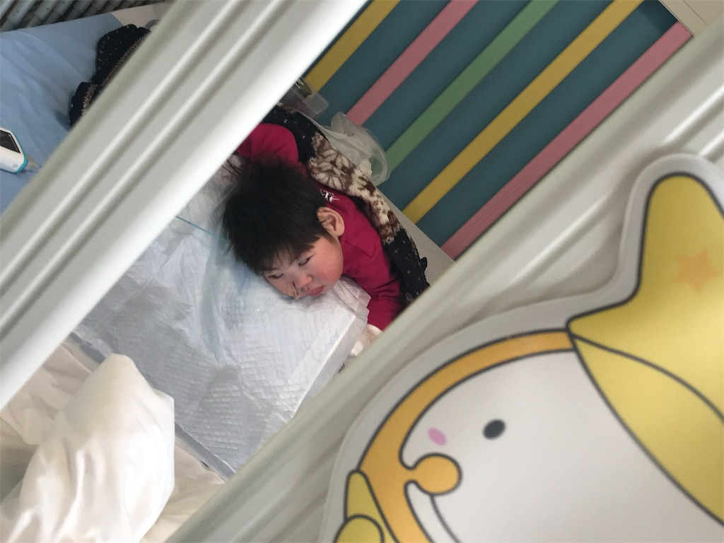 f:id:kikuo_tamura:20190116183144j:image