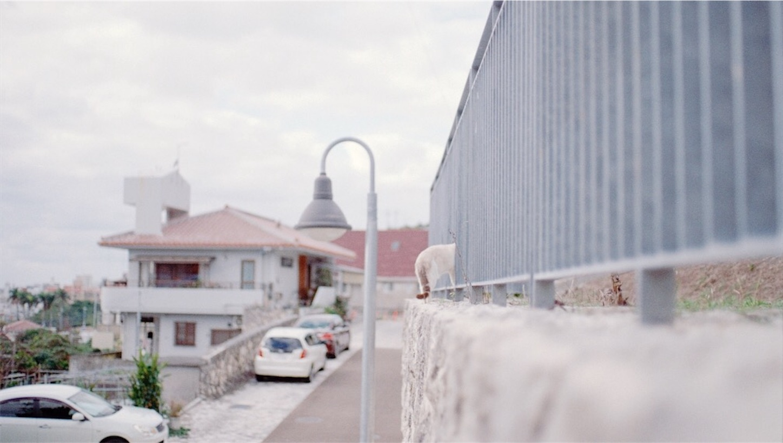 f:id:kikutabayashi:20200120211756j:image