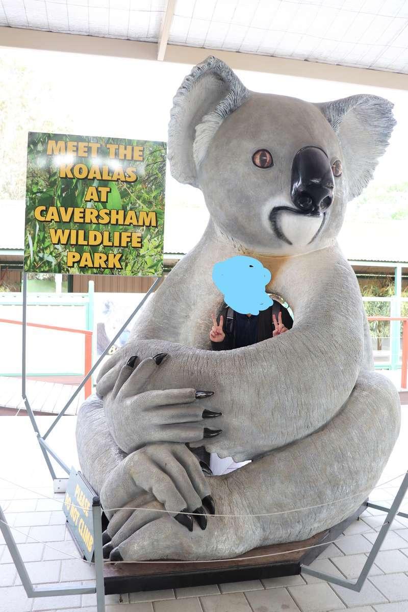 巨大なコアラ人形