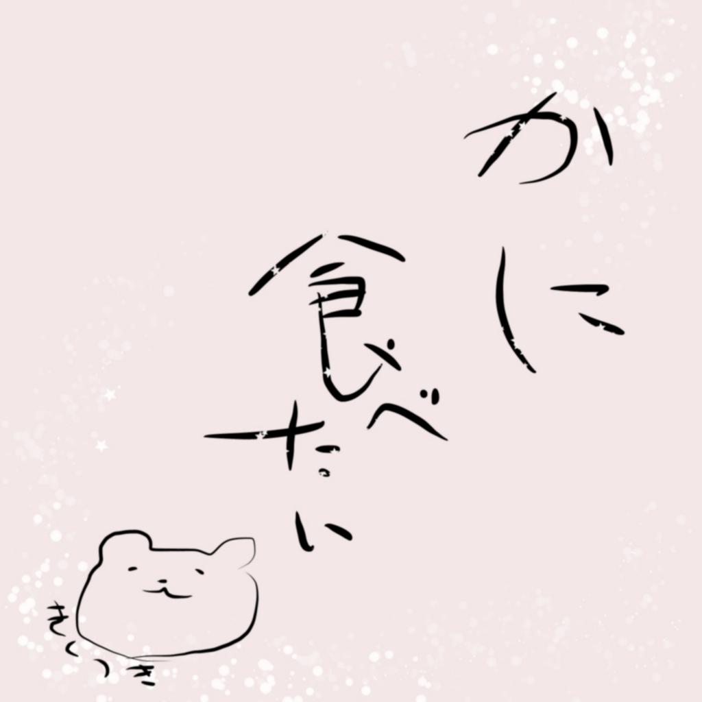 f:id:kikutoyoruhome:20170123222439j:plain