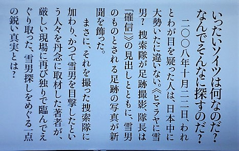 f:id:kikuy1113:20210221014751j:plain