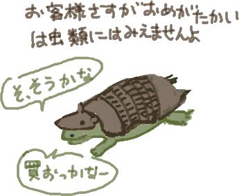 亀岡甲羅店