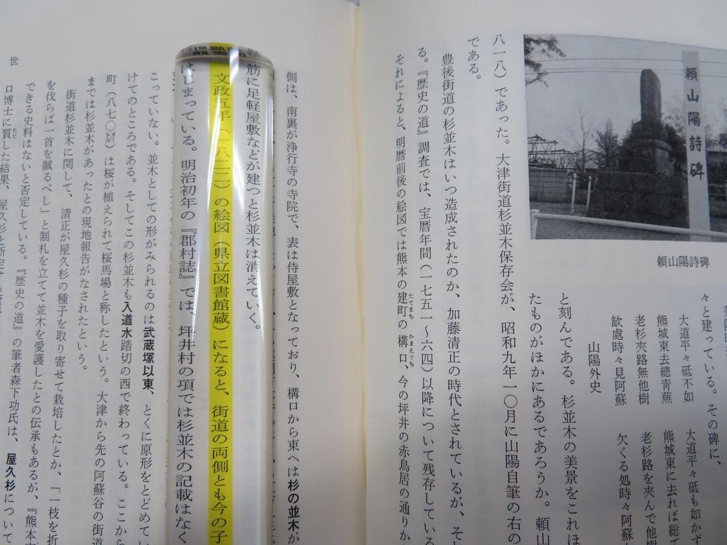 f:id:kikuyo-lib:20190223100959j:plain