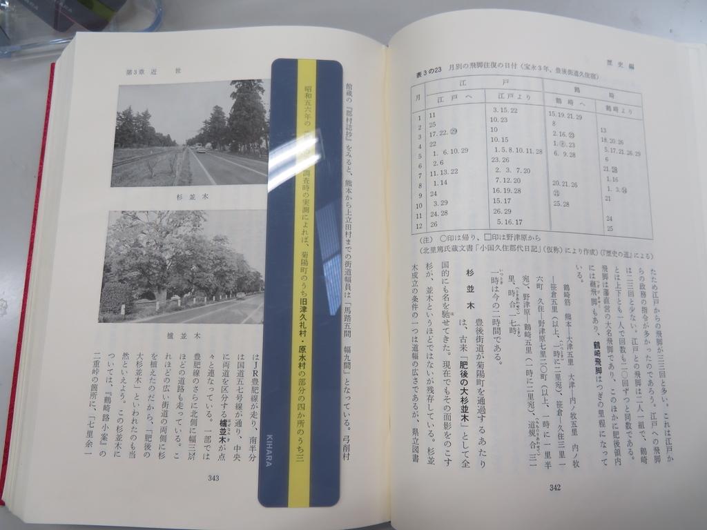 f:id:kikuyo-lib:20190223101036j:plain